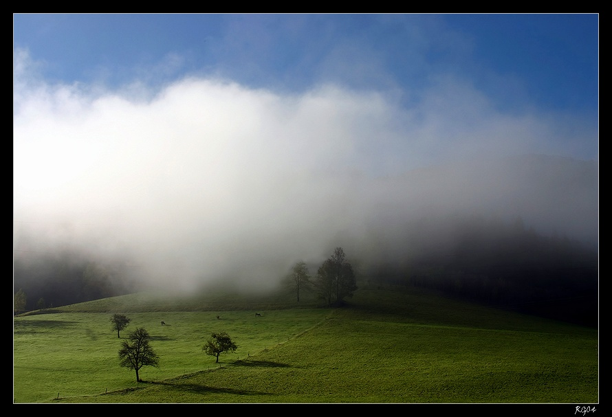"""""""Wenn der Nebel geht"""""""