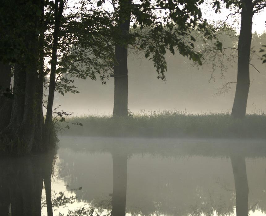 wenn der nebel sich über dem neuen Tag erhebt