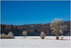 Wenn der Winter bei uns so schön ist...