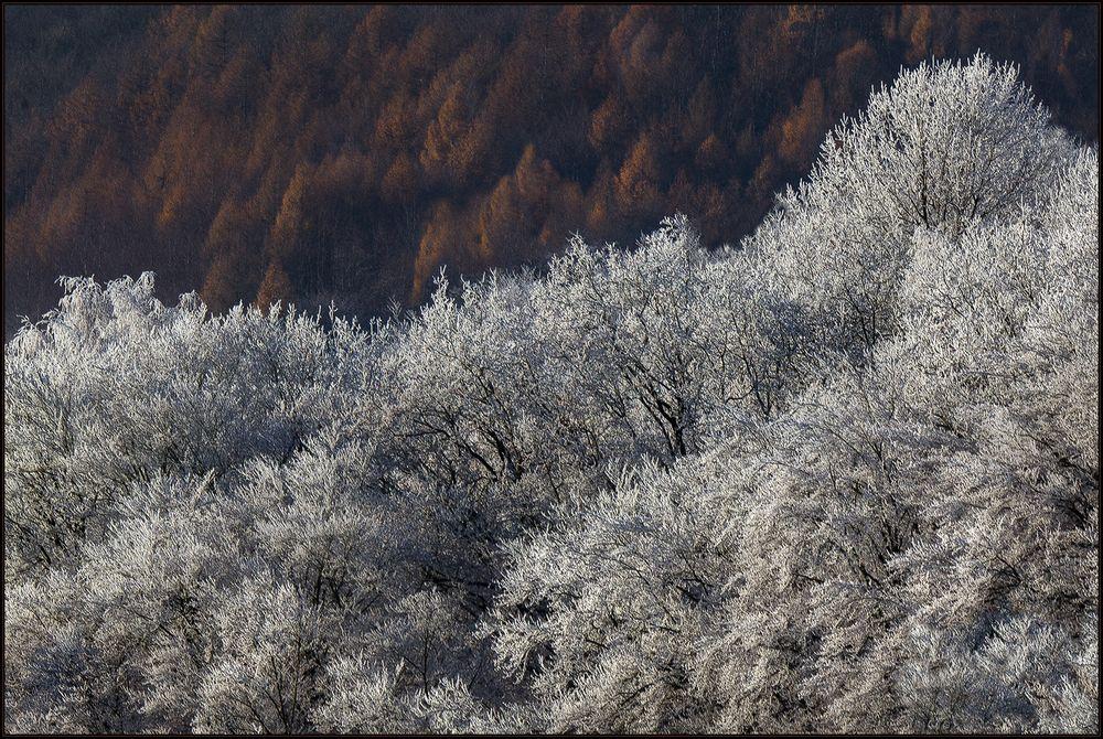 Wenn der Winter geht... (mit 3-D-Effekt)