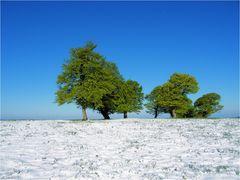 Wenn der Winter sich in den Sommer verliebt hat #3