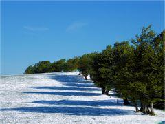 Wenn der Winter sich in den Sommer verliebt hat #5