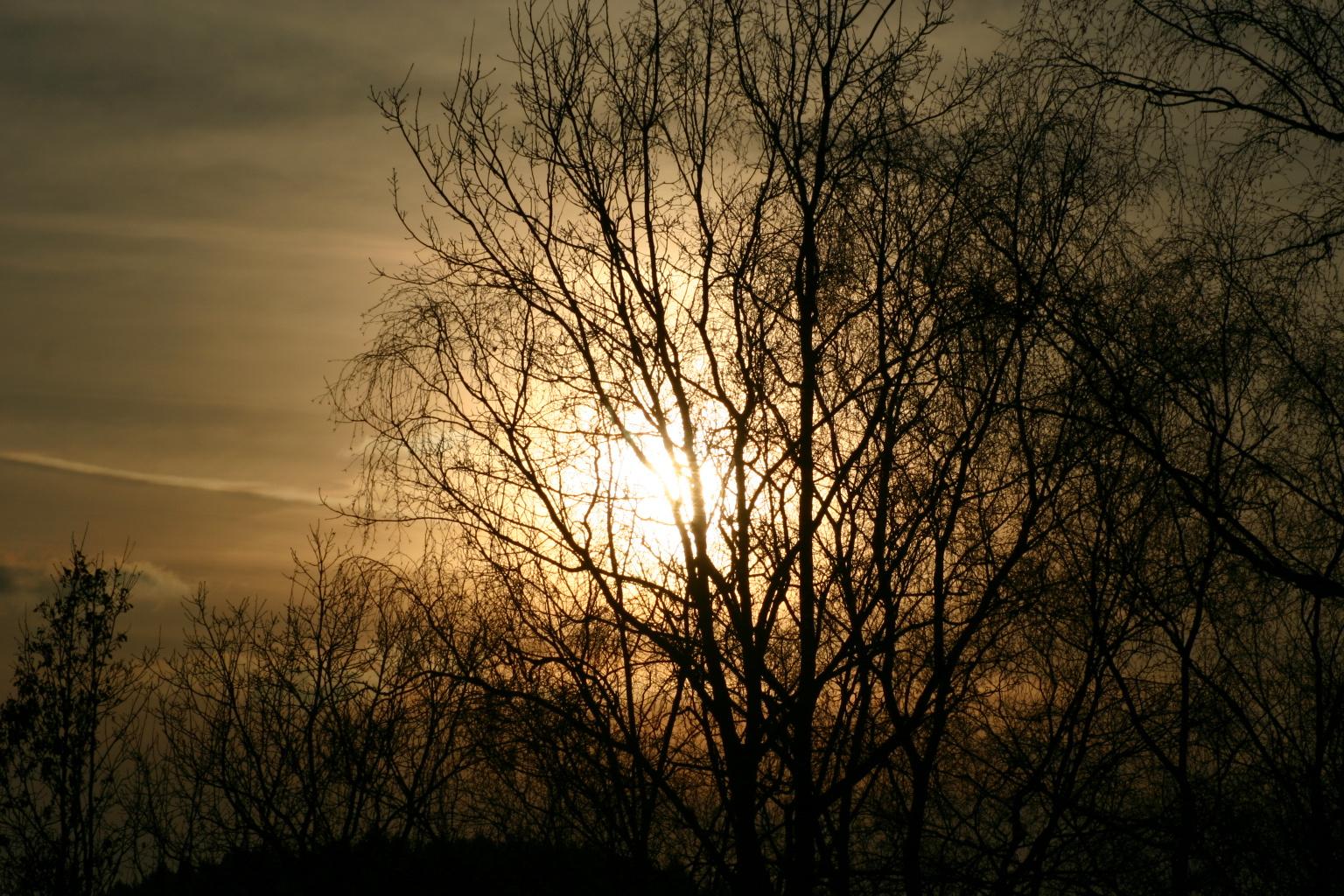 wenn die Abendsonne sinkt