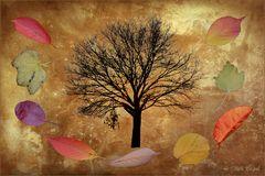 wenn die Blätter fallen.....