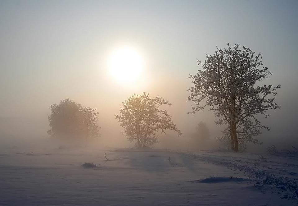 Wenn die Sonne den Eisnebel verdrängt...