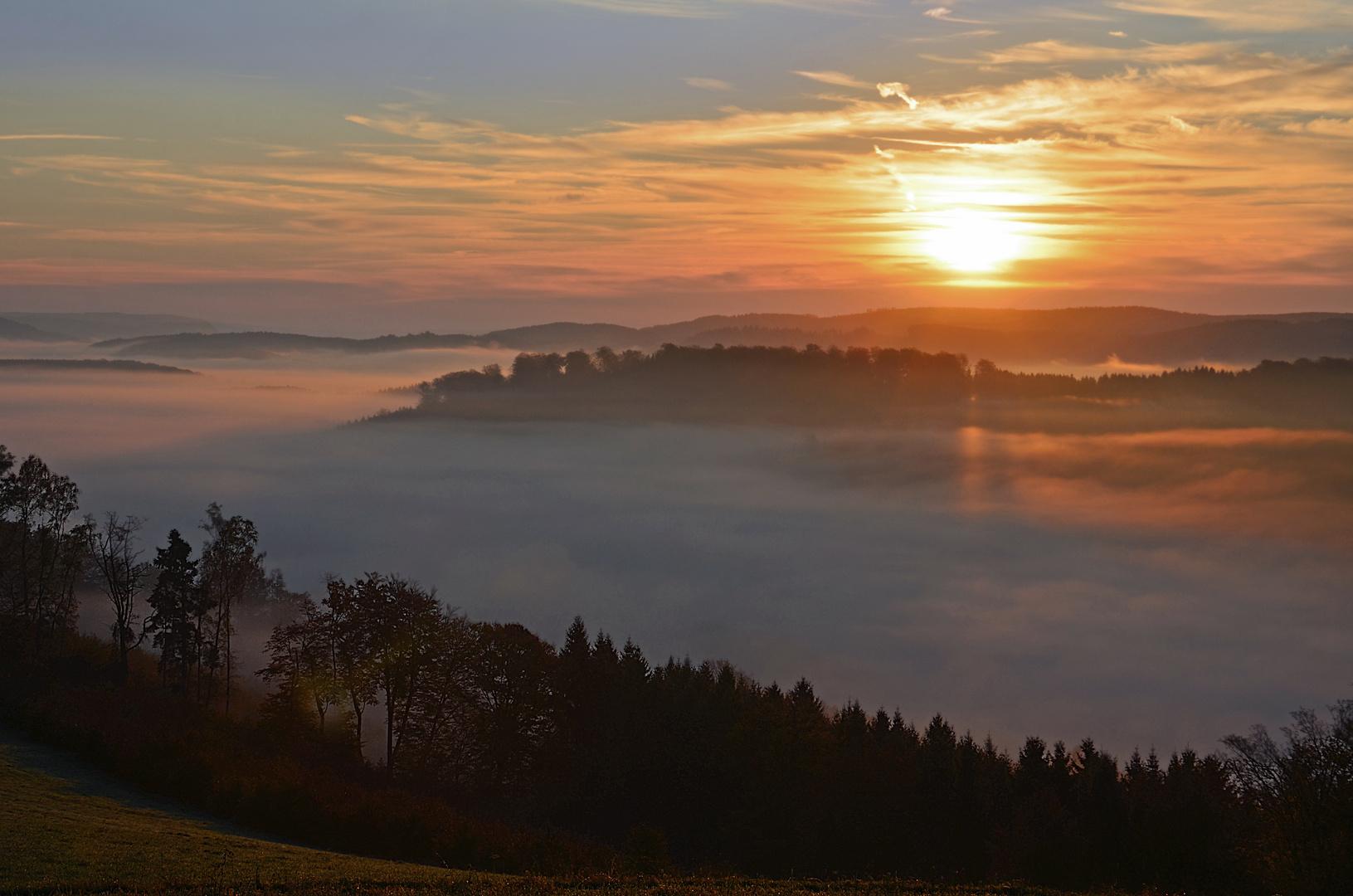 Wenn die Sonne den Nebel küsst