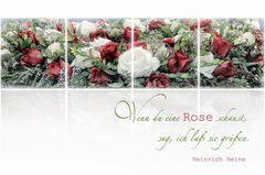WENN DU EINE ROSE SCHAUST .....