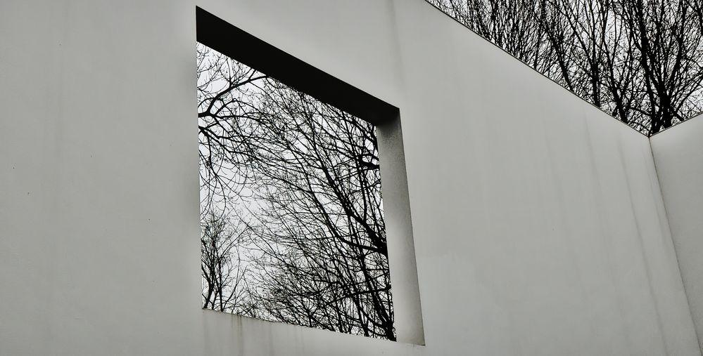 Wenn einem Dach und Fenster fehlen!......