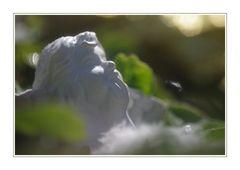 Wenn Engel träumen ...