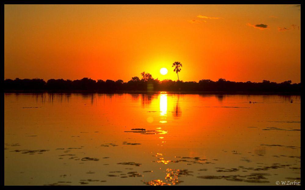 - Wenn es Nacht wird am Okavango -