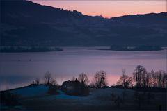wenn es Nacht wird am Zürichsee