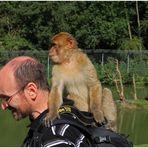 ... wenn ich die Nikon nicht bekomme, dann schließe ich halt Freundschaft mit Peter.