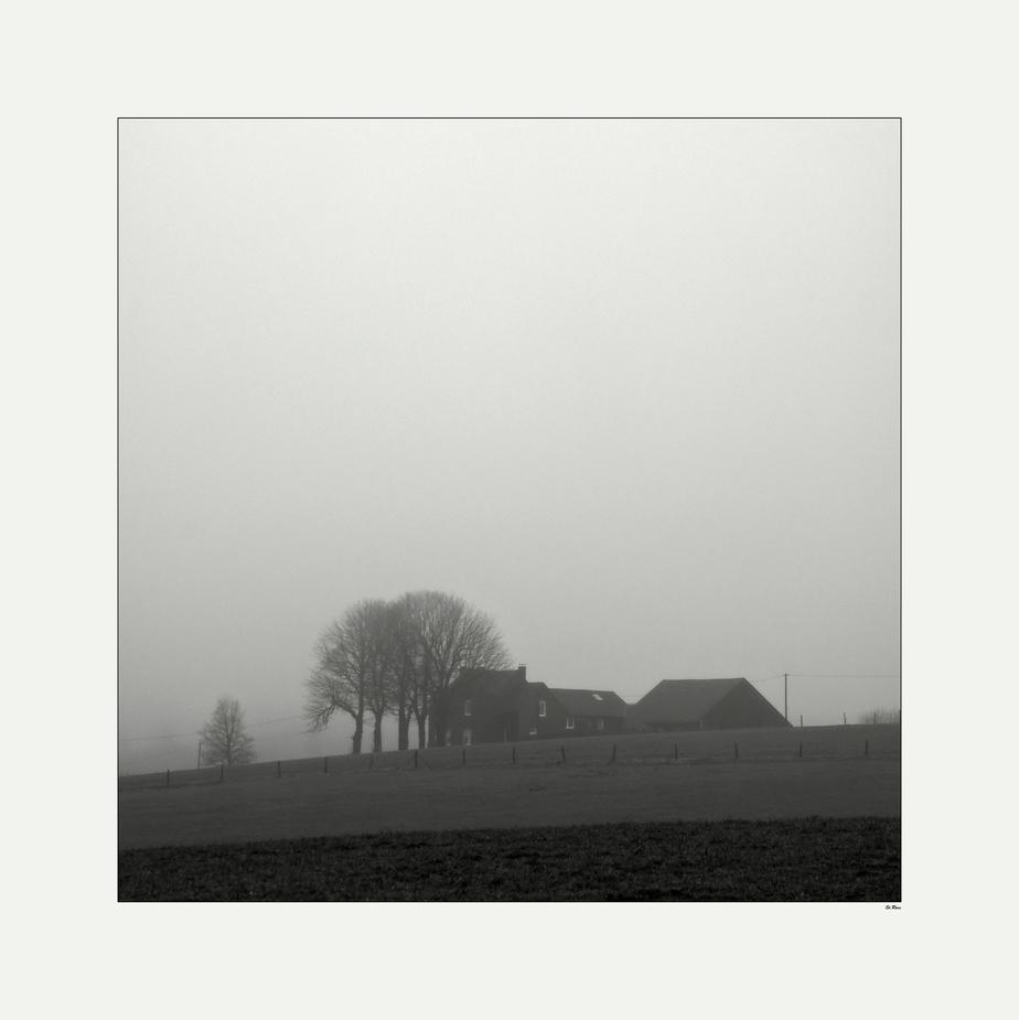 Wenn noch alles schläft und der Nebel den Tag erwachen lässt..