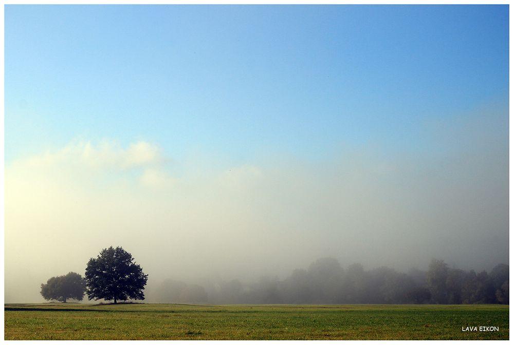 Wenn sich der Nebel auflöst...