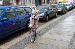 Wenn Teddies Rad fahren