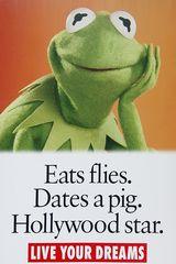 Wer die Fliegen nicht ehrt, ist das Schwein nicht wert