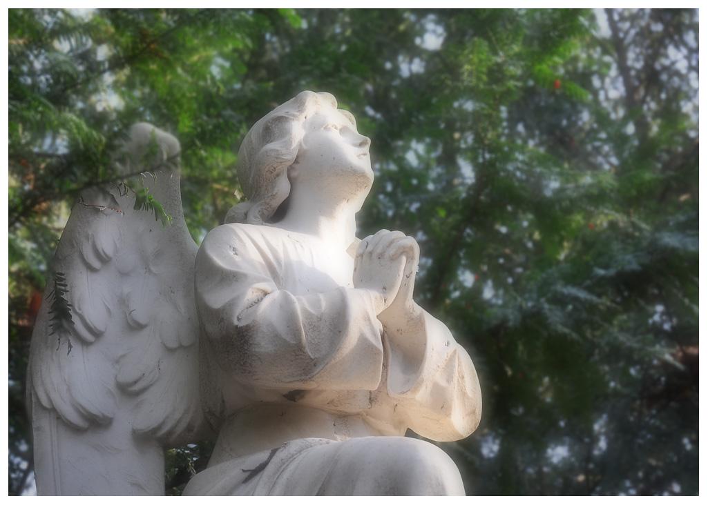 Wer Engel sucht ...