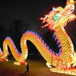 Wer hat Angst vorm großen Drachen?