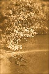 °°° Wer hat das Fahrrad im See versenkt ? °°°