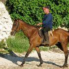 Wer reitet nach Menorca