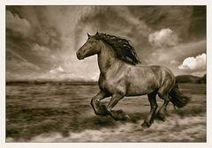 Wer reitet so spät durch Nacht und Wind...........