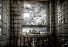 Wer schaut da zum Fenster rein?