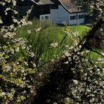 Wer spricht noch von Frühling?