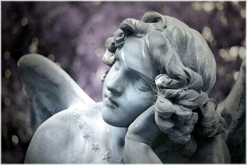 Wer unter Menschen nur einen Engel sucht,...