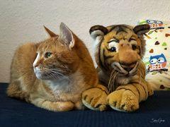 Wer von beiden ist denn nun der echte Tiger? ;-)