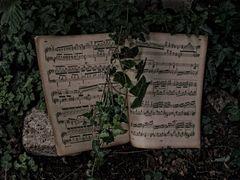 Werke von Franz Liszt