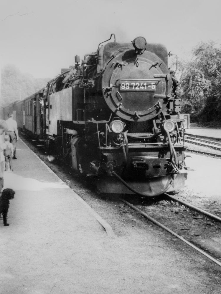 Wernigerode, 99 7241-5