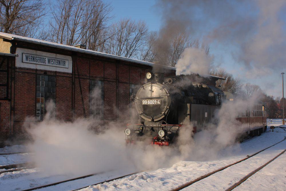 Wernigerode Westerntor, 99 6001-4