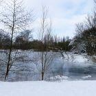 Werth in Schnee und Eis