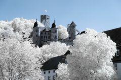 Wertheim 5