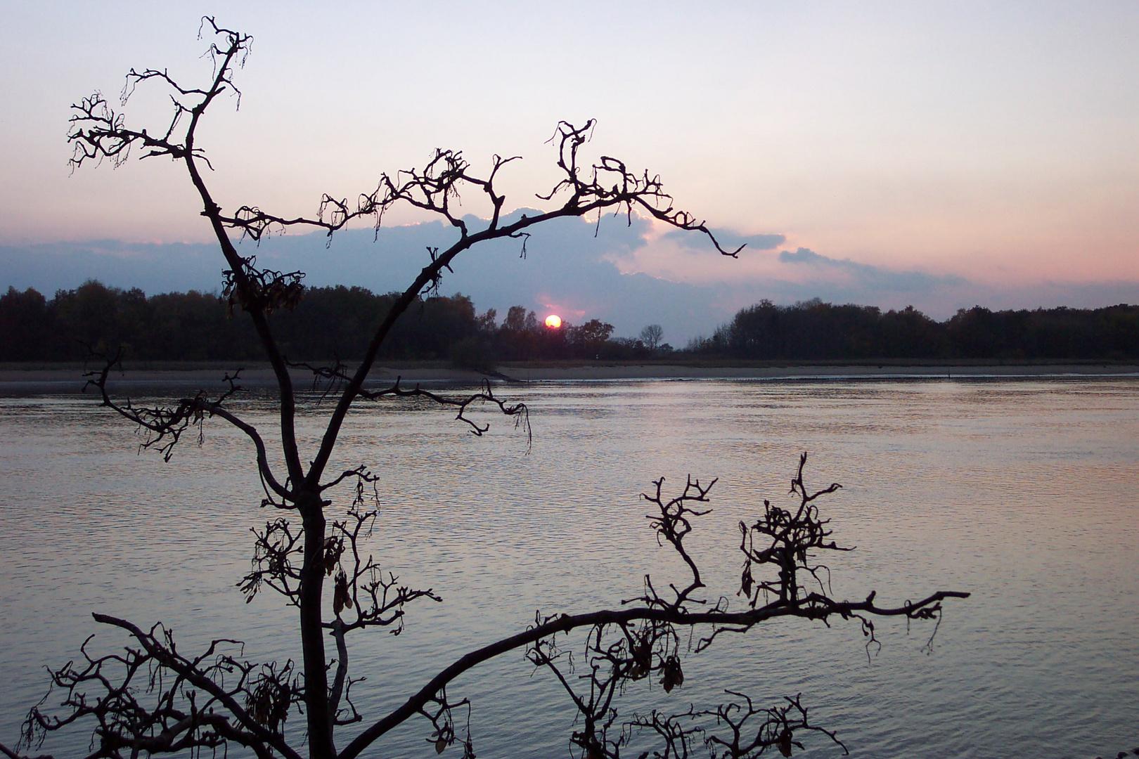 Weserufer im November