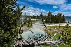 West Thumb Geyser Basin, Yellowstone.             DSC_3865-2