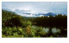 Westcost Rainforest