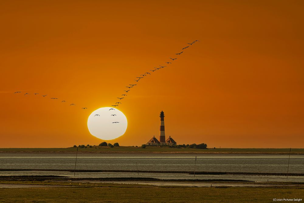 - Westerhever Sunset -