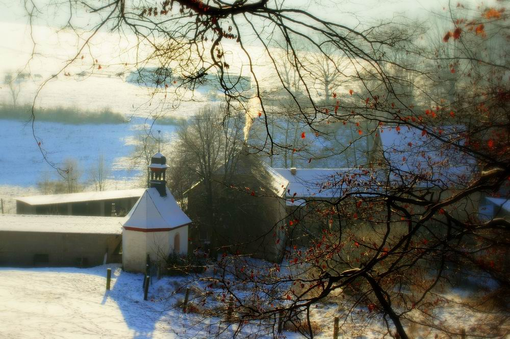 Westerwälder Wintertag