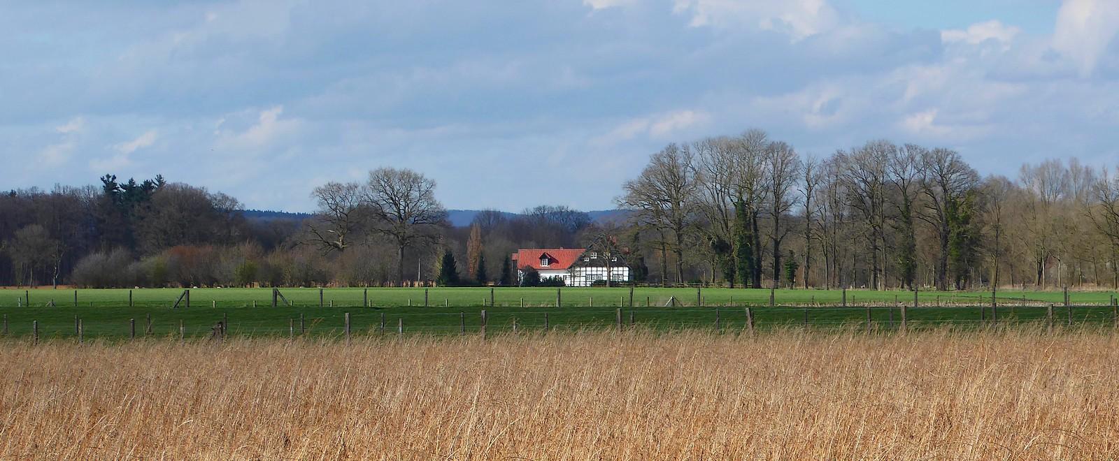 Westfälische Landschaft im Winter.