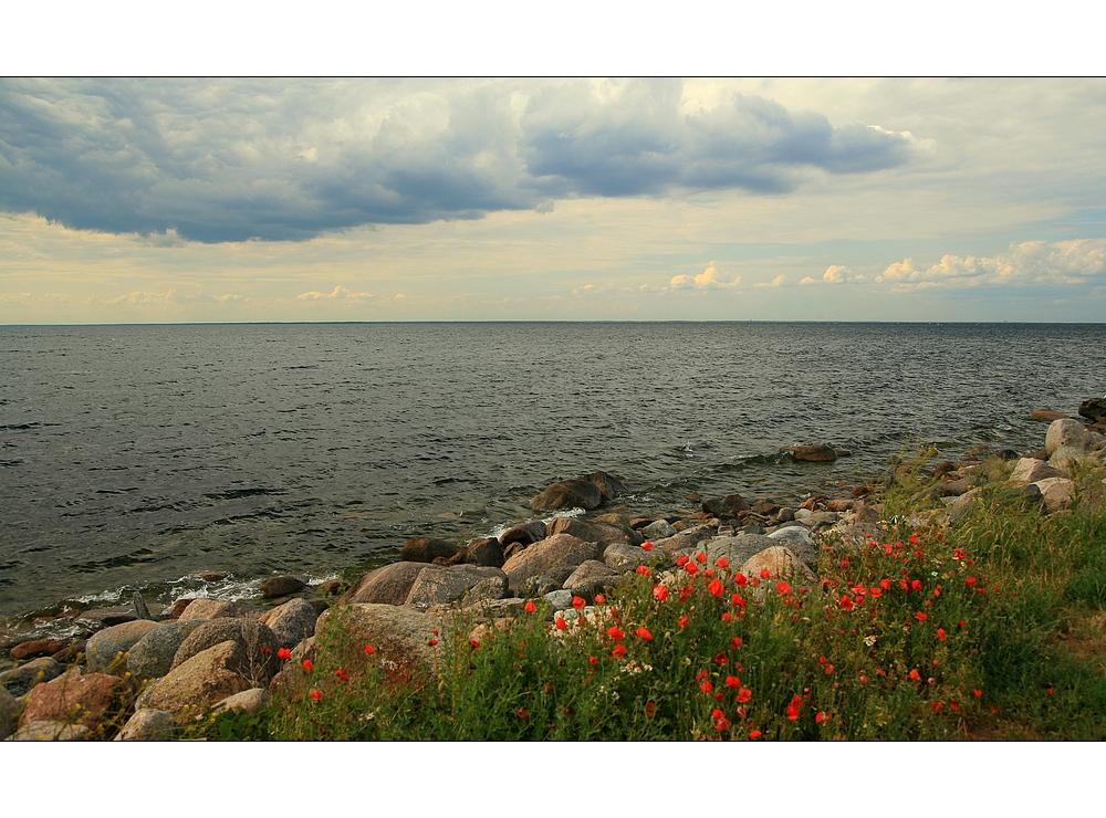 Westküste von Öland