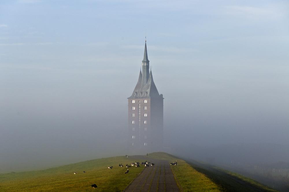 Westturm mit Gänsen