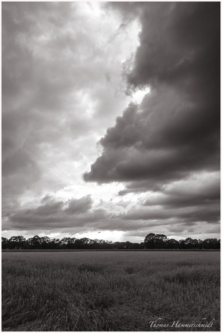 Wetter auf dem Land