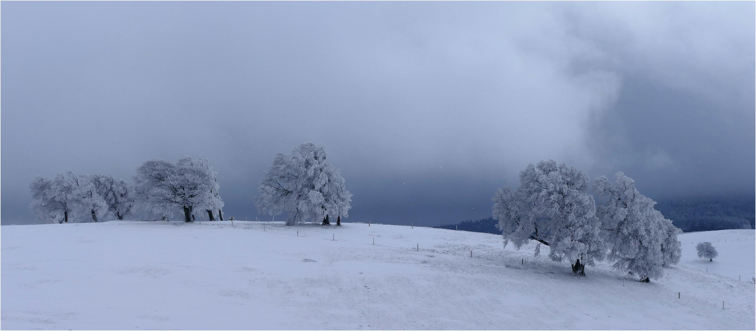 Wetter In Buchen