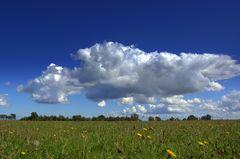 Wetterbild Hiddensee
