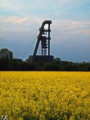Wetterschacht Lerche, Mai 2009