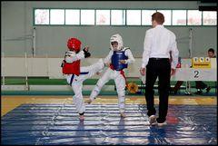 Wettkampf-Taekwondo 01