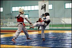Wettkampf-Taekwondo 03