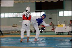 Wettkampf-Taekwondo 05