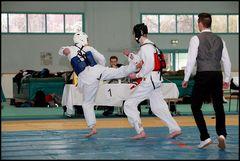 Wettkampf-Taekwondo 06